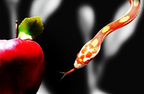 temptation-apple-and-snake.jpg