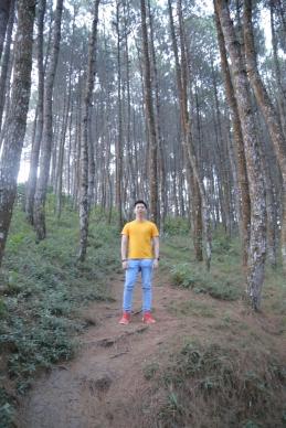 Bukit Moko 9