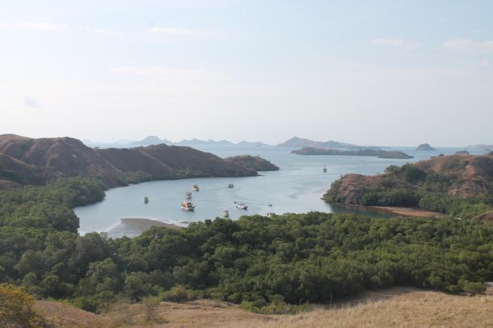 Pemandangan dari Atas Pulau Rinca
