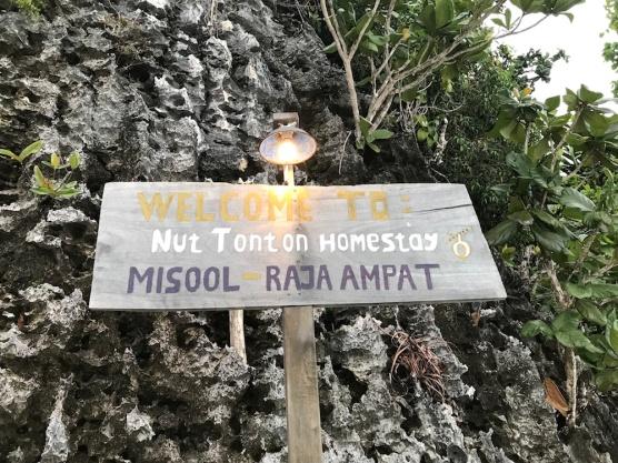 Nut Tonton 3