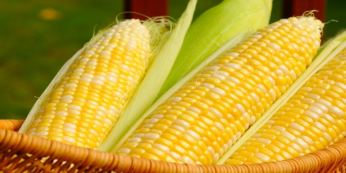 Here-Is-Why-Eating-Corn-During-Monsoon-Is-Good-For-Your-Health