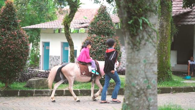 Bogor.00_00_23_27.Still012