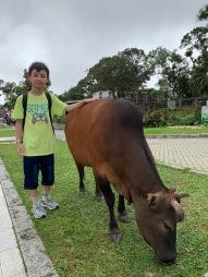 Ngong Ping Village 4