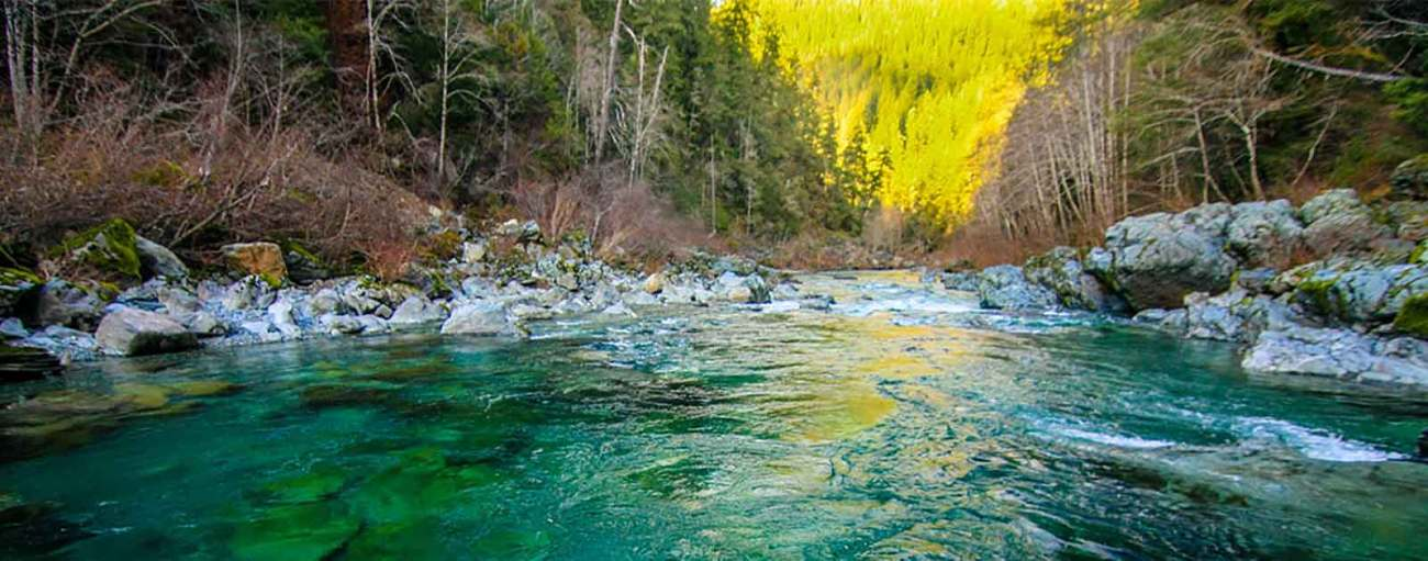 nw-rivers-threatened-by-red-flat-systems_kenmorrish-header
