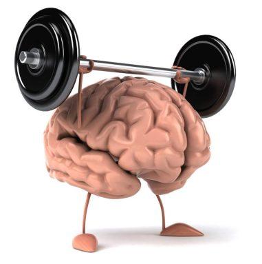 weight-lifting-brain-893x900-1